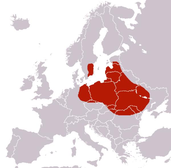 Mapa występowania czerwca polskiego